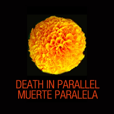 Death in Parallel: Muerte Paralela