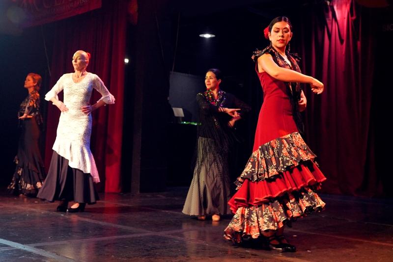 Arte Flamenco (1)