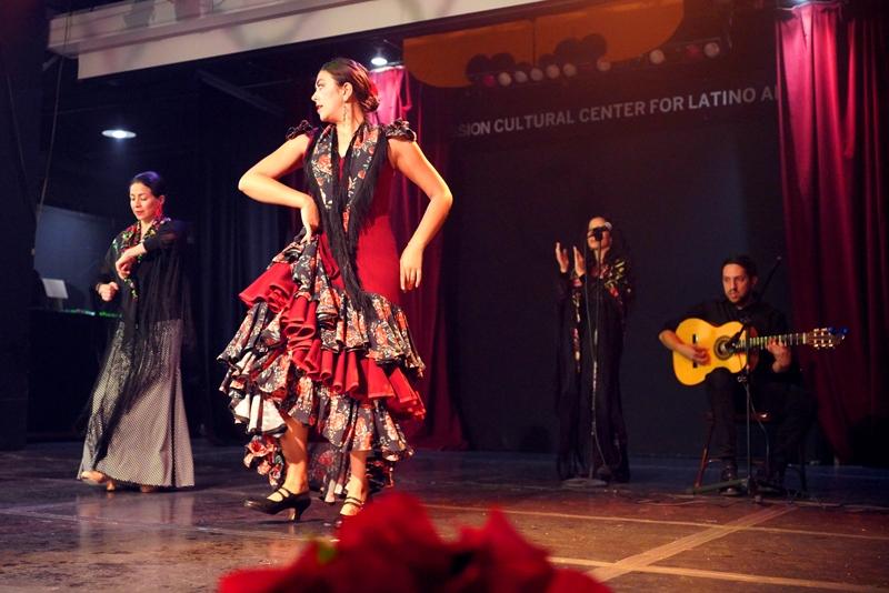 Arte Flamenco (2)