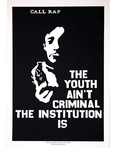 Print LR268 - The Youth Ain't Criminal, The Institution Is